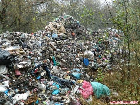 4 грузовика выбросили львовский мусор в поле на Сумщине - Цензор.НЕТ 5538