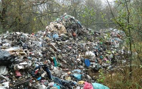 Гори львівського сміття