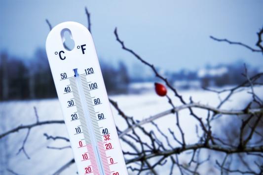 Морозна погода