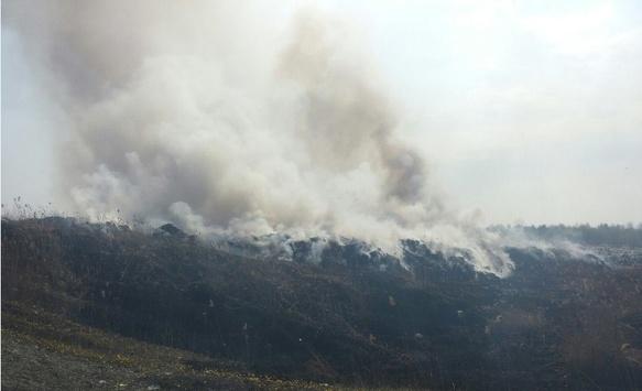 Пожежа у Терновиці
