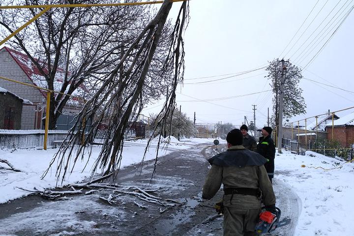 Негода звалила майже 4 тисячі дерев, загинула одна людина - ДСНС
