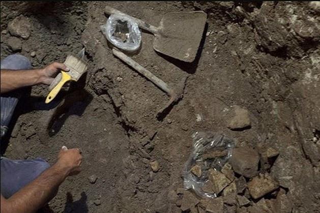Археологи відкопали вУзбекистані маленьке містечко