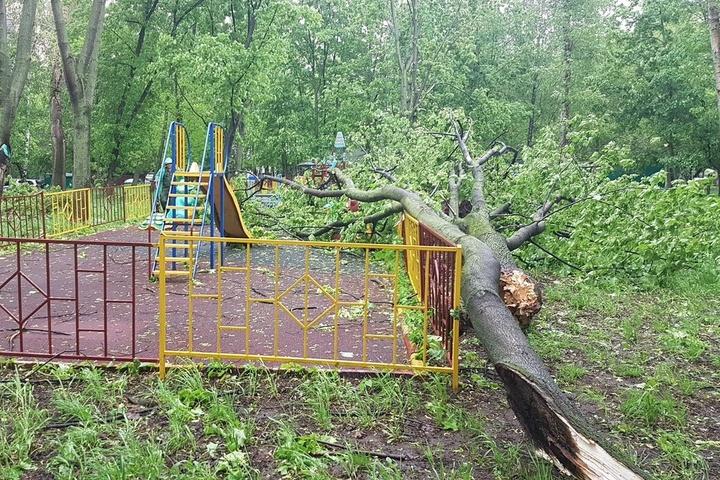 МЗС: Українець загинув внаслідок урагану в Підмосков'ї