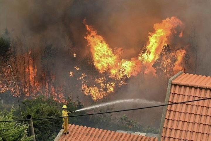 Від лісових пожеж уПортугалії українці непостраждали— консул