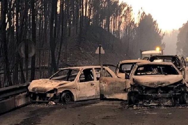 <span>У неділю 18 червня в центральному регіоніПортугалії сталася</span>масштабна лісова пожежа