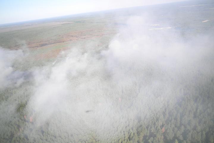 Пожежа у зоні відчуження: рятувальники гасять тліючі осередки