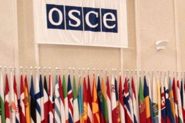 ОБСЄ підготувала резолюцію про деокупацію Криму і Донбасу