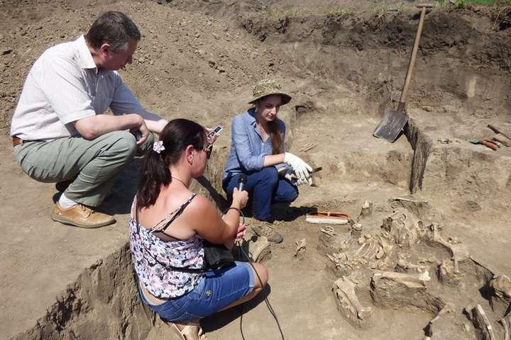 <p>Знахідки були розкопані під час експедиції, в якій взяли участь представники восьми вищих навчальних закладів</p>