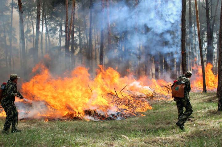 ДСНС: У10 областях України оголошено підвищену пожежну небезпеку