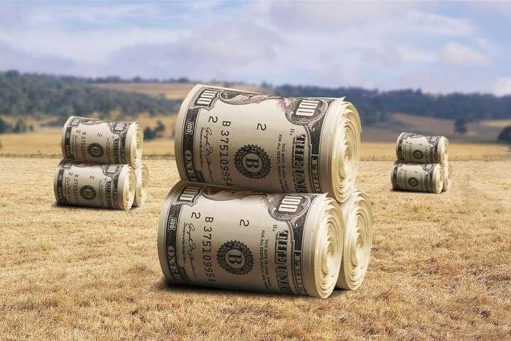 В АПК діяли схеми, які спустошували бюджет на мільярди гривень, – НАБУ