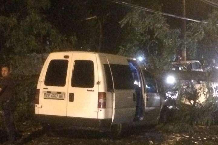 НаЧернівці обрушилася буря: повалені десятки дерев, розбиті авто