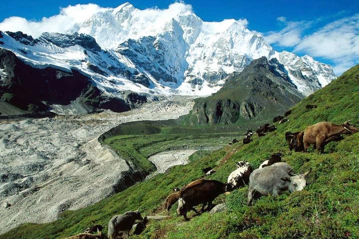 У Тибеті зафіксовано землетрус магнітудою 6,3