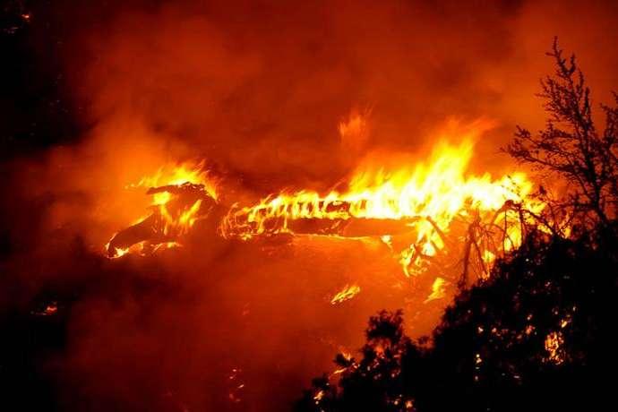 Через лісові пожежі вКаліфорнії оголосили надзвичайний стан