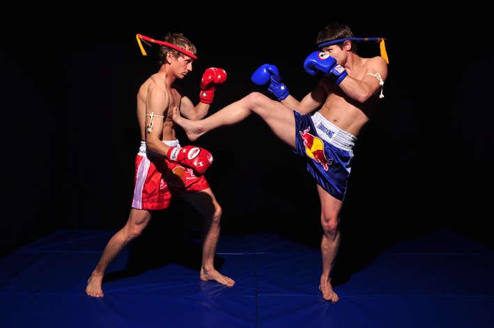 """Результат пошуку зображень за запитом """"тайські боксери"""""""