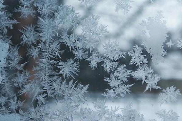 Синоптик: у більшості областей України завтра буде до11 градусів тепла