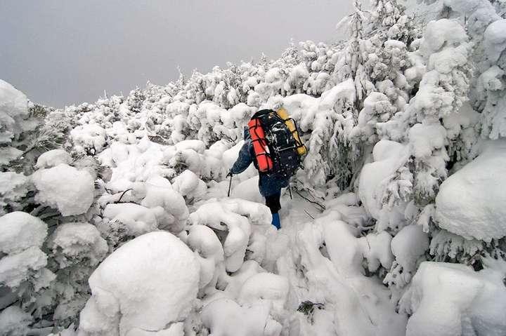 Рятувальники знайшли п'ятьох туристів, які заблукали вгорах Закарпатської області