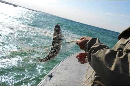 ЗМІ: Російські прикордонники затримали двох українських рибалок