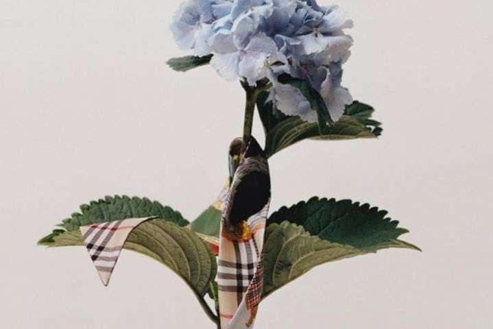 Экоосознаность в моде: Burberry больше не будут сжигать нераспроданную одежду