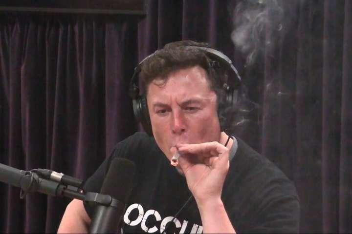 Прямой эфир марихуана конопле форум