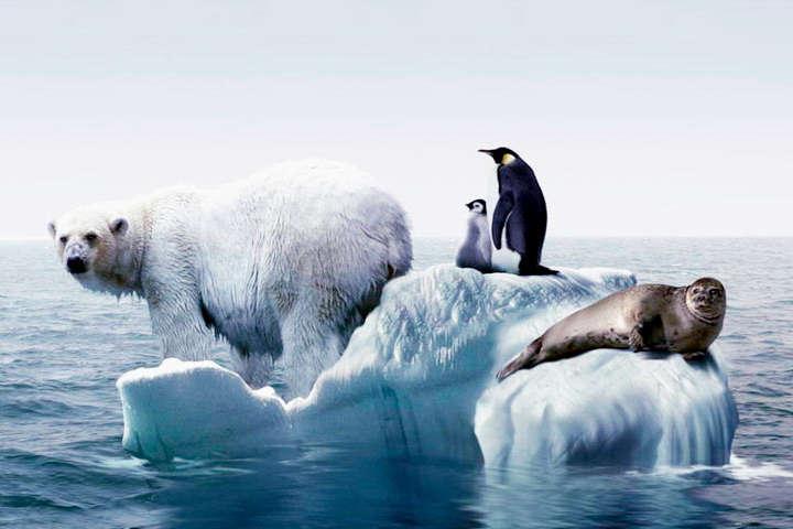 Стримати глобальне потепління: в ООН закликають звести до нуля викиди вуглекислого газу