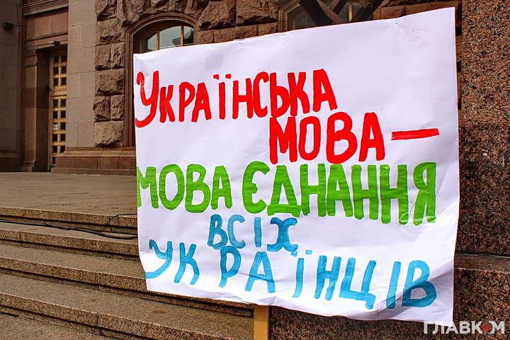 Закон о языке надо принять до начала предвыборной кампании - Подоляк