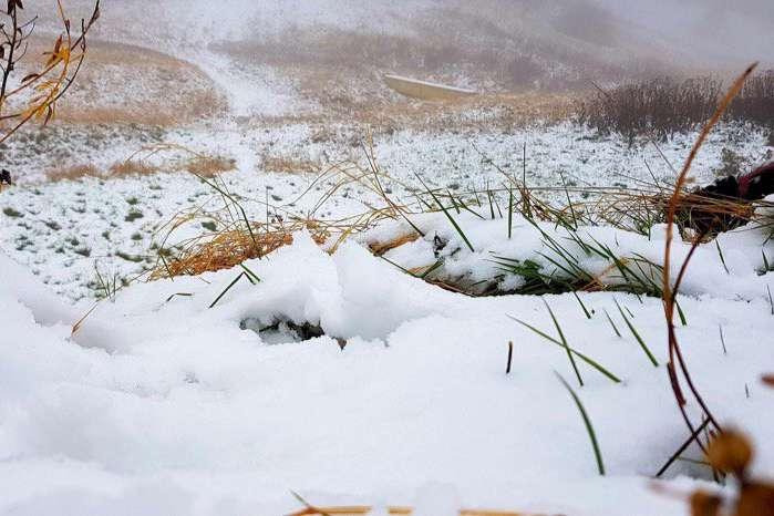 На горі Ай Петрі в окупованому Криму випав перший сніг — У горах Криму випав перший сніг: опубліковано фото