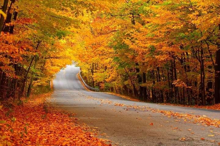 Останній день жовтня буде теплим в Україні