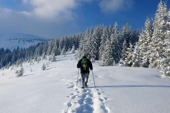 У Карпатах найближчими днями випаде до 30 сантиметрів снігу — Синоптики попередили про сильні снігопади у Карпатах