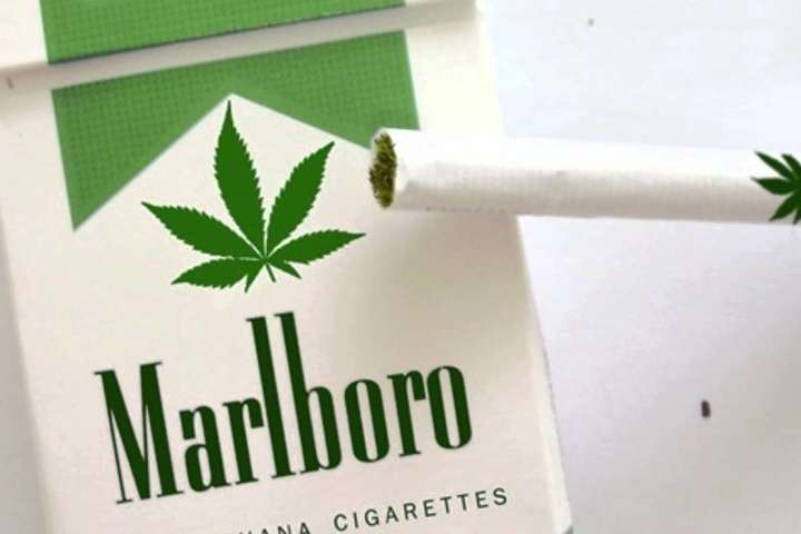 Виробник сигарет Marlboro займеться вирощуванням марихуани