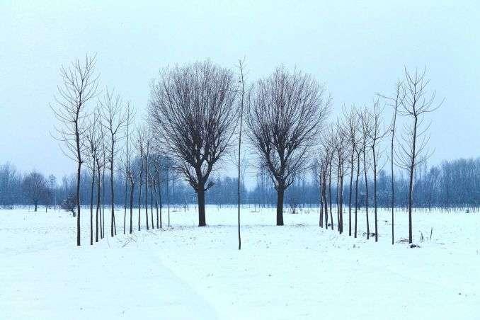 В Україні очікується мороз і мокрий сніг: прогноз погоди на 13 лютого