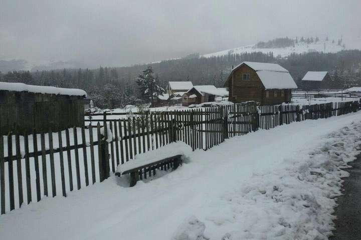 Зима у травні: вражаючі фото засніженого Прикарпаття