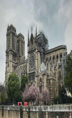 У соборі Паризької Богоматері вперше після пожежі відслужили месу