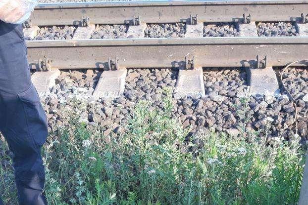 На Київщині святкування Івана Купала закінчилося трагедією: потяг збив хлопця (фото)