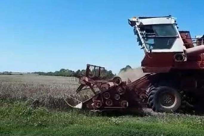 На Київщині розгорівся скандал навколо сільськогосподарського кооперативу
