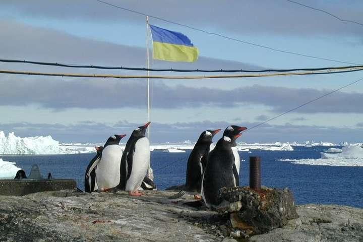 Організатори Всеукраїнського маршу вимагатимуть, зокрема, заборонити цирки з тваринами та дельфінарії, хутрові ферми і контактні зоопарки — Українці в Антарктиді вперше підтримають марш за захист тварин