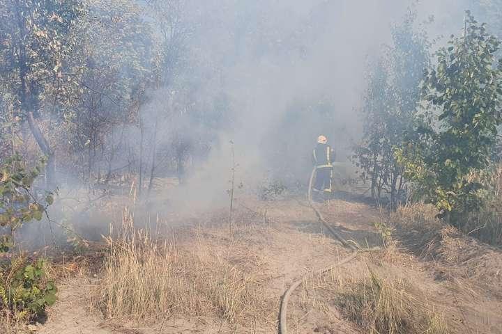 На Київщині не вщухають пожежі в екосистемах (фото)