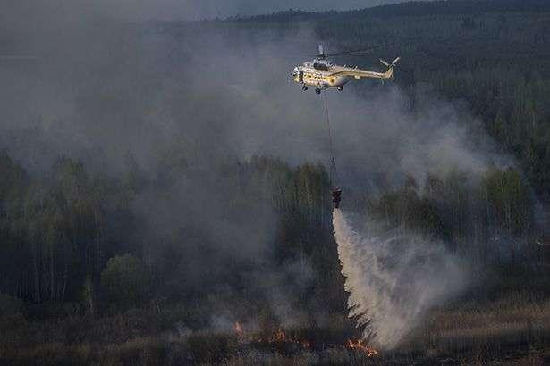 На Київщині поблизу зони відчуження горить ліс