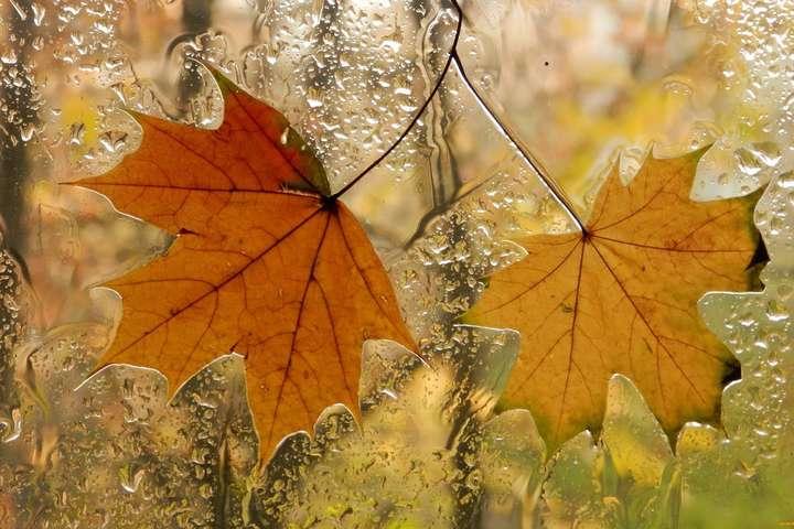 Прогноз погоди на понеділок: заморозки та дощі на півдні України
