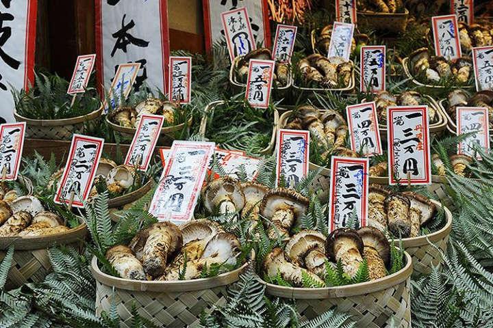Фахівці проводили дослідженняза жителями країни у віці від 40 до 79 років - У Японії вчені домлідили роль грибів у профілактиці раку