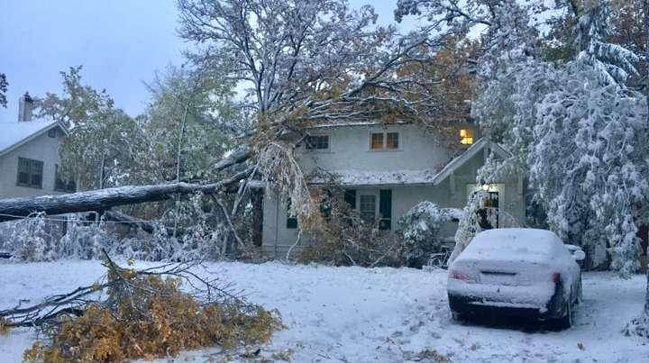 У Канаді ввели режим надзвичайного стану через снігопад - Канаду завалило снігом: введено режим надзвичайного стану