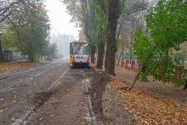 У Дніпрі трамвай «порізав» дерево