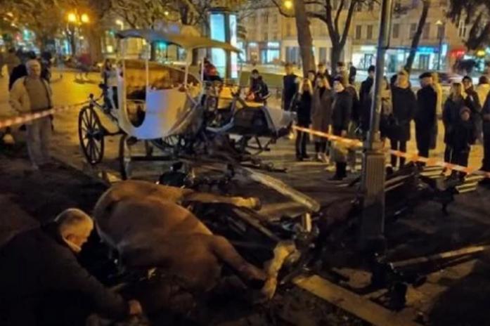 <p>Очевидці події повідомили, що хтось із львів'ян підривав петарди чи запускав салют, що і налякало коней Об этом сообщает <a href=