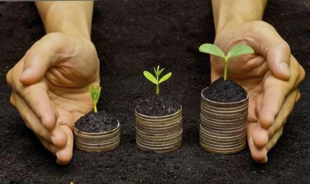 Ринок землі: у Порошенка готують поправки, які не дадуть сконцентрувати ресурси «в одних руках»