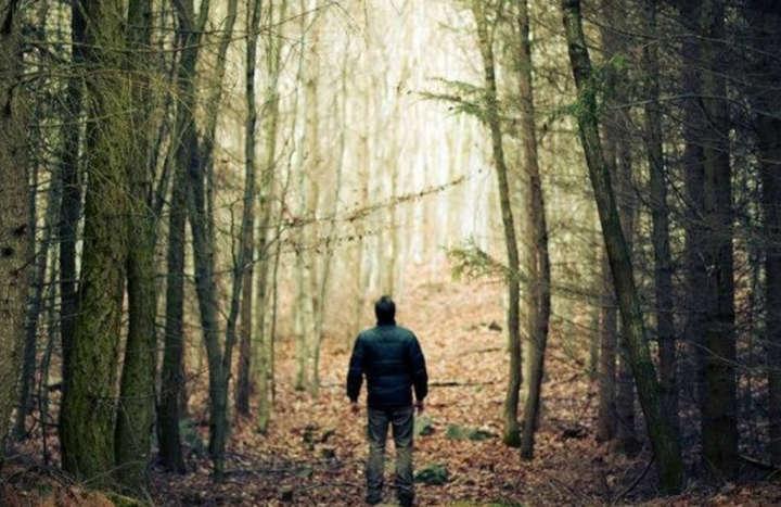У лісі на Франківщині цілу ніч шукали заблукалого чоловіка