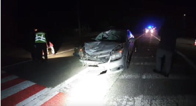 Під Києвом авто на смерть збило двох пішоходів