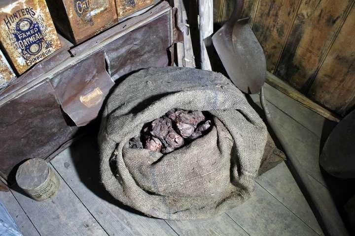 <p>Цибуля пролежала у хатині більше 100 років</p> <p> — У хатині в Антарктиді знайдено мішок цибулі, якому 100 років»></p></div> <div class=