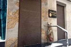 Фото: - <span>Мертву тварину натабличці бутика сфотографував випадковий очевидець</span>