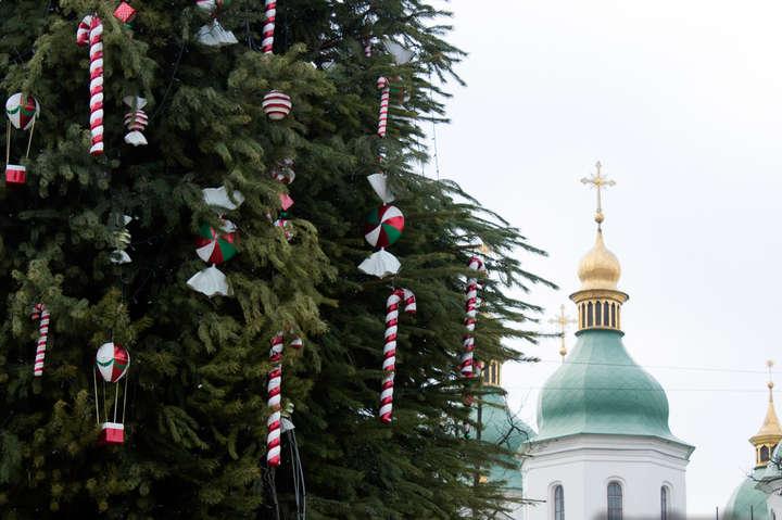 На Софійській площі з'явилася новорічна ялинка: як виглядає зелена красуня (фото)