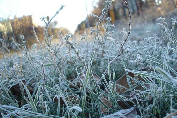 В Україні вдарять морози з вітрами і туманами: прогноз погоди на 15 січня