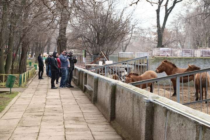 Вхід в зоопарк буде через Преображенський парк